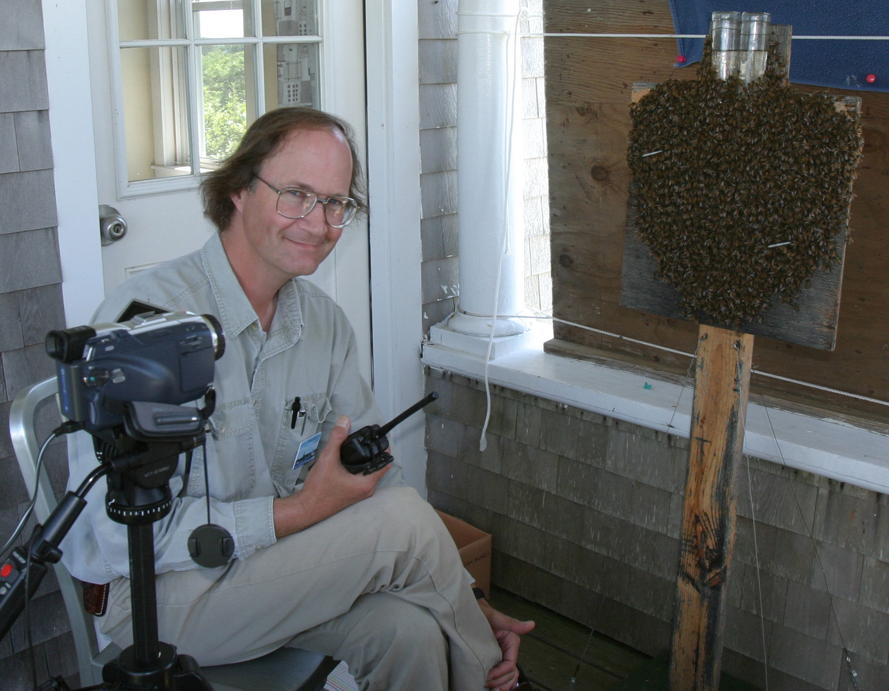 Tom Seeley with swarm
