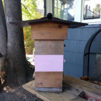 Warre hive (3 boxes) with observation windows and Warre compatible swarm trap.