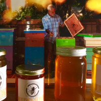 Honey, Raw & Unfiltered from North, Northeast Portland for Sale